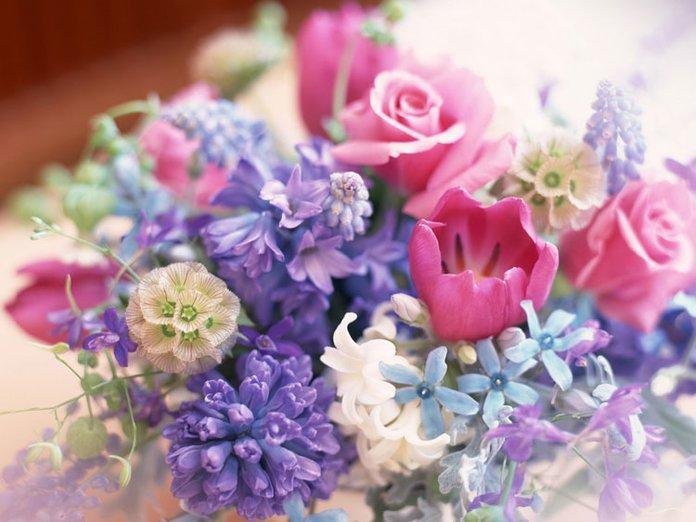 Вірші і поздоровлення з Днем народження доньці