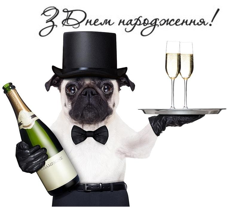 Привітання офіціантові з Днем народження