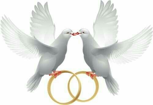 Короткі привітання з річницею весілля в прозі