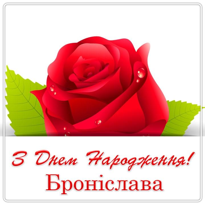 Красиві привітання з Днем народження та Днем Ангела Броніславі